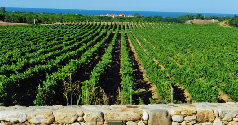Views from the restaurant La Table de Valmy at Argeles-sur-Mer