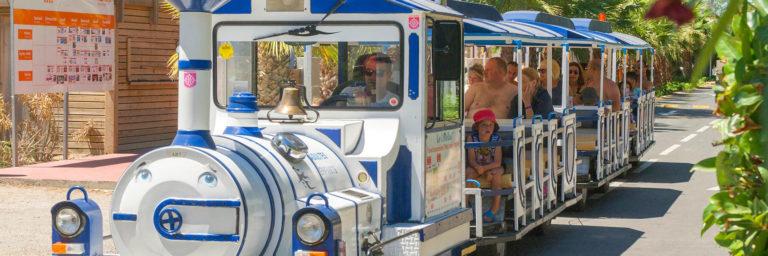 The trainbus (TAM)